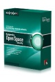 Kaspersky Work Space Security- Cross- grade